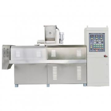 Hot Sale Frozen French Fries / Potato Chips Crisps Frying Making Machine