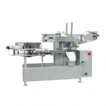 Corn Snack Food Machines Food Extruder in Good Quality