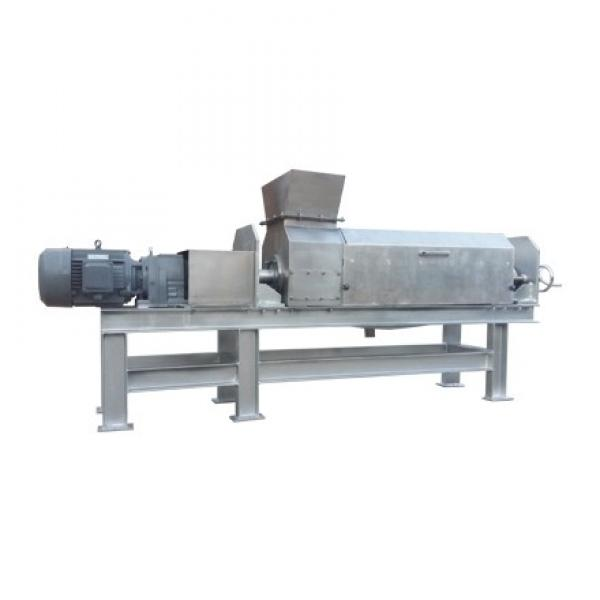 Saibainuo Automatic Corn Puff Core Filled Filling Stick Snack Food Cheese Ball Breakfast Cereal Flake Bread Crumb Making Processing Equipment Extruder Machine