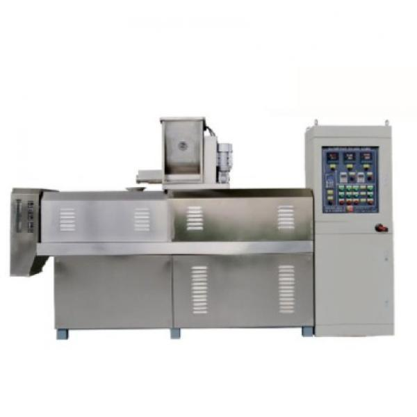Industrial Small Scale Finger Potato Crisps Frying Frozen French Fries Making Machine